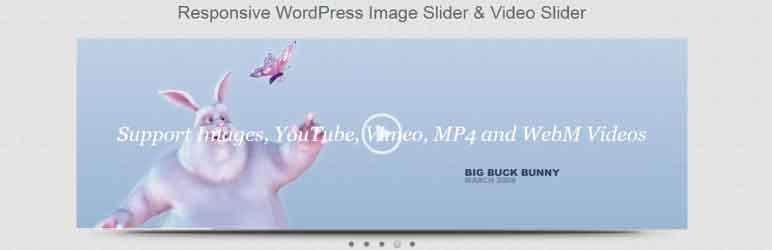 Responsive Image Slider Plugin WordPress aumentar el tiempo de permanencia en una web Bee Ingenious