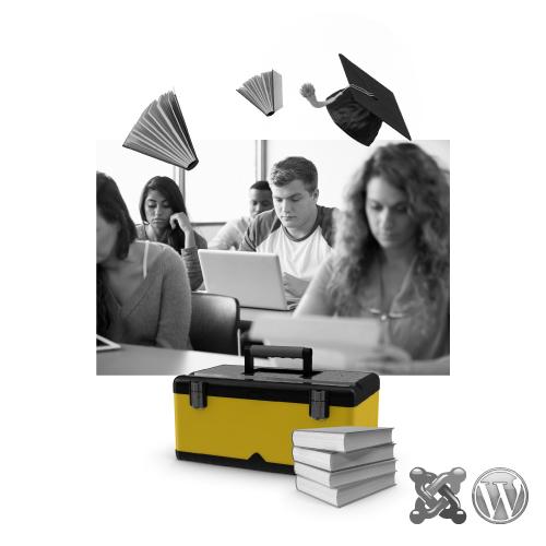 Tu escuela onfire - Bee Ingenious